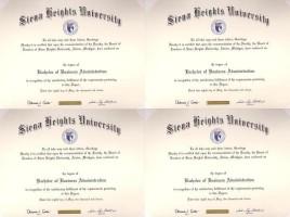 Bachelor's Degree 4