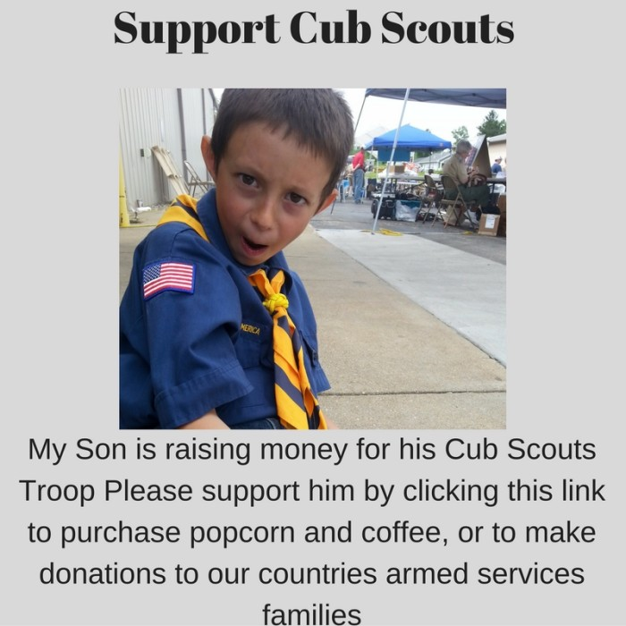 Support Boy Scouts