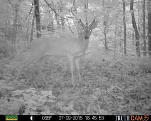 hunter access program