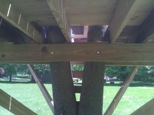 How To Build A Cheap Tree House My 300 Tree Fort Action