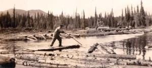Alcan highway Logging